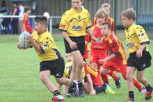 albi rugby club